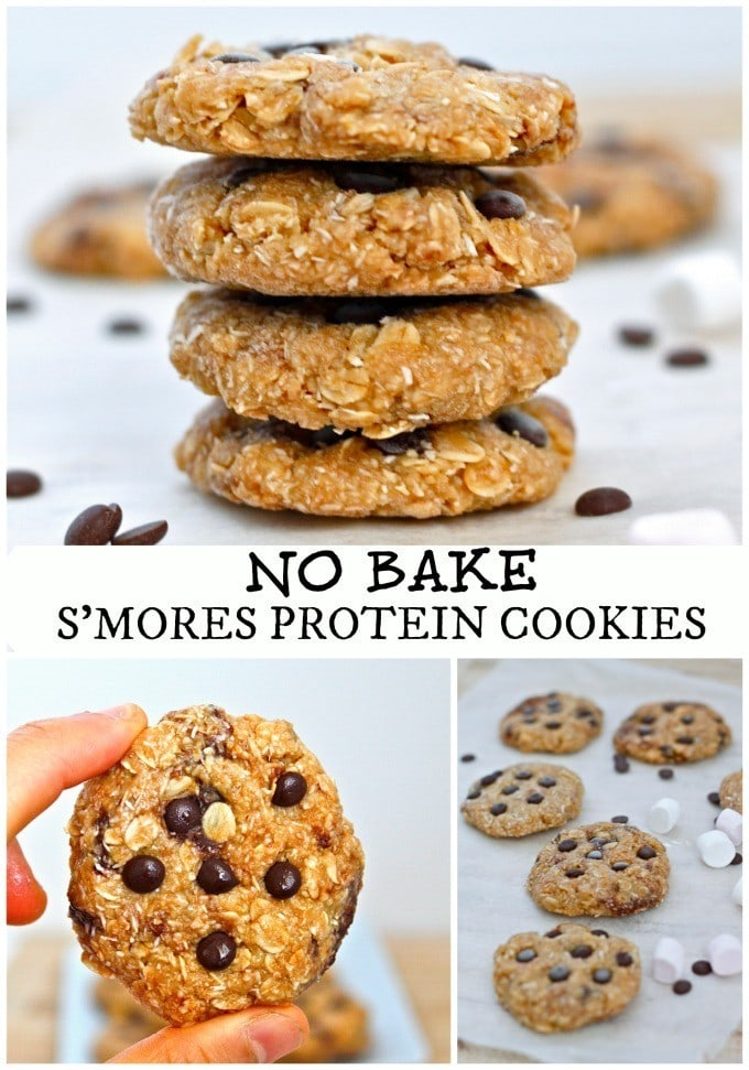 no bake protein cookies5 No Bake Smores Protein Cookies