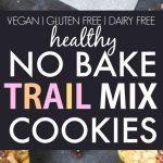 Healthy No Bake Trail Mix Cookies (Vegan, Gluten Free, Sugar Free)