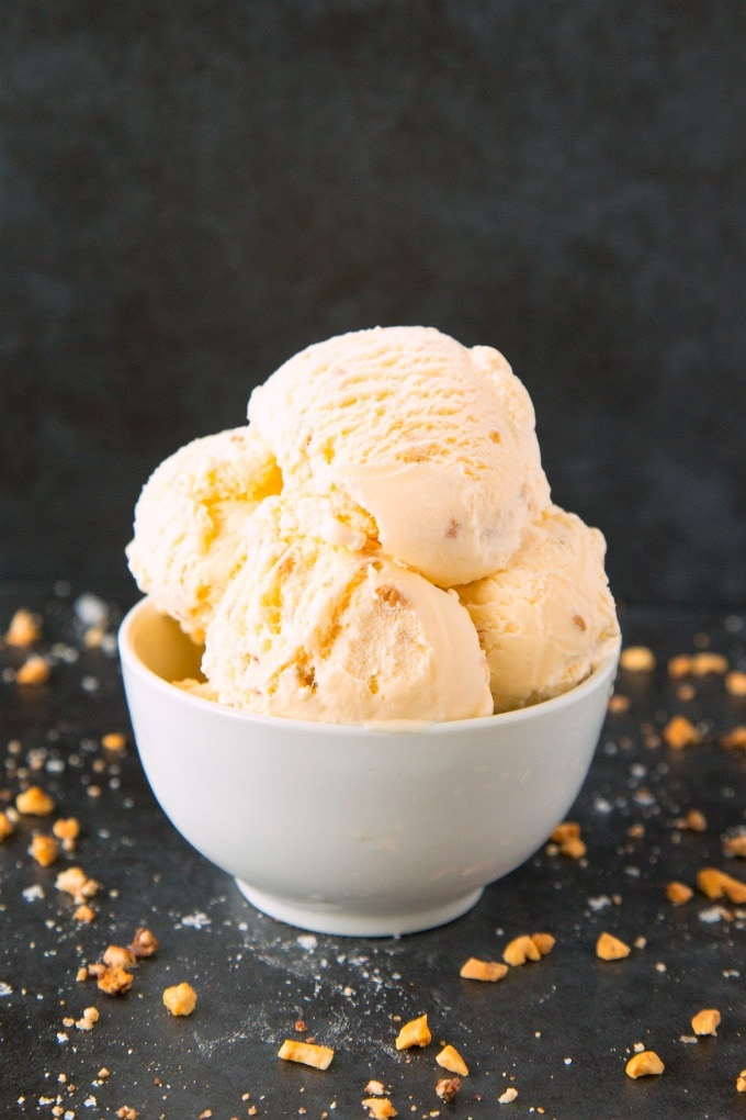 Keto and Vegan Low Carb Peanut Butter Ice Cream Recipe