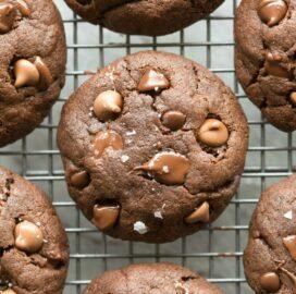 paleo vegan keto chocolate cookies with chocolate chips