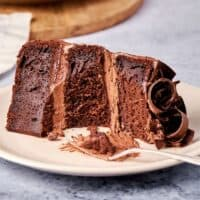 fat free chocolate cake