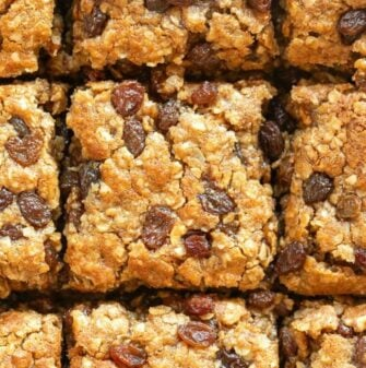 oatmeal and raisin bars