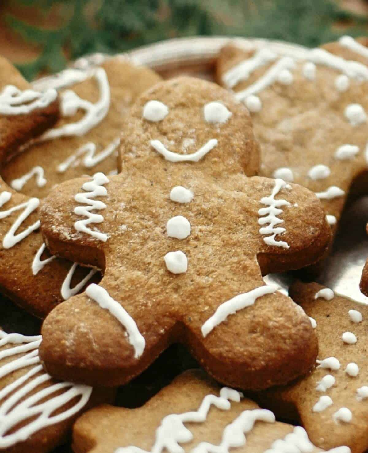 sugar free gingerbread cookies