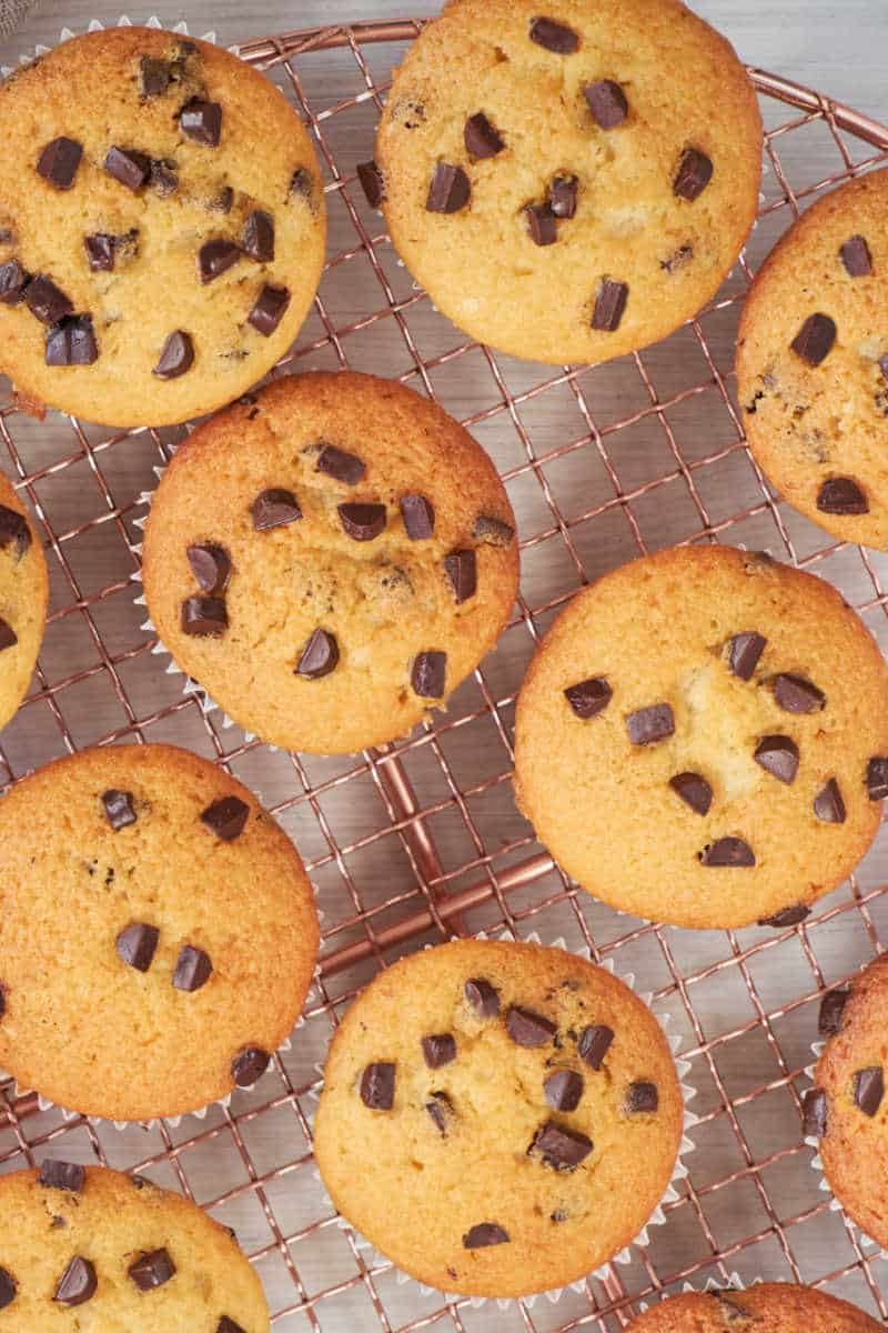 low carb chocolate chip muffins