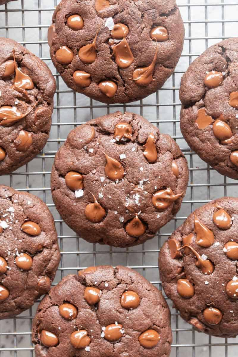 sugar free chocolate cookies